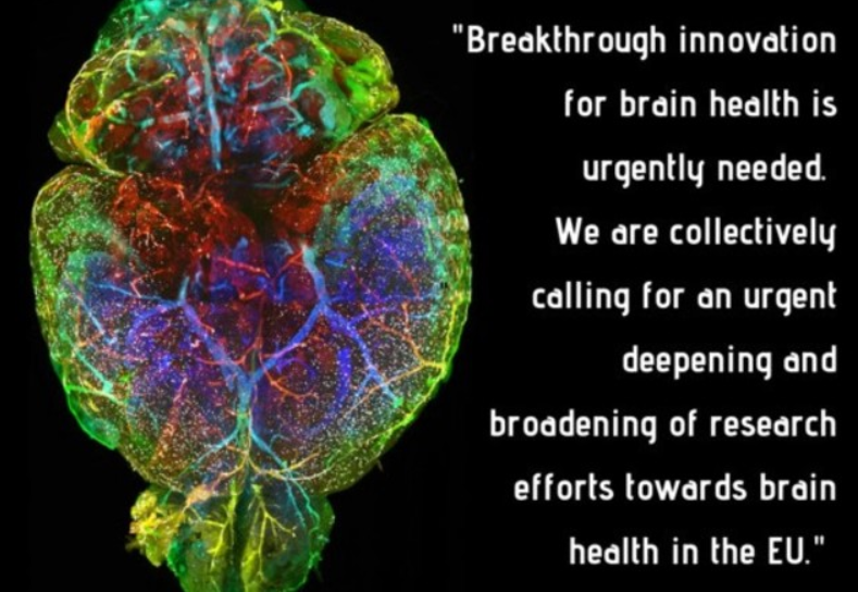 PETITION – Call for increased emphasis on brain research in the strategic plan for Horizon Europe