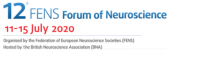 11-15 July 2020   (Virtual) 12th FENS Forum of Neuroscience