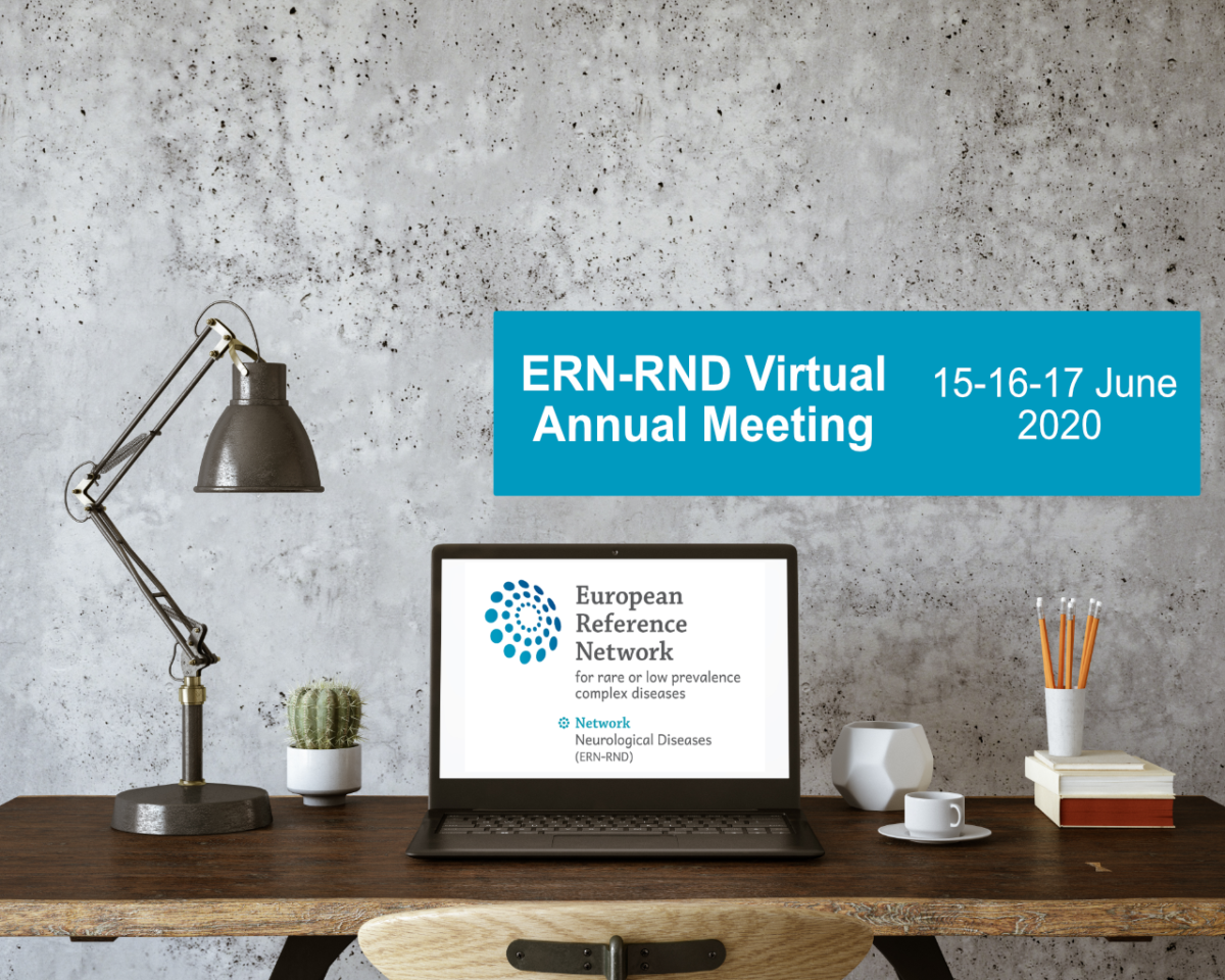 15-16-17 June 2020 | ERN-RND (virtual) Annual Meeting