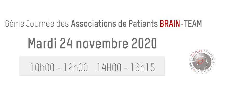 24 November 2020 | Annual meeting for patient organisations BRAIN-TEAM