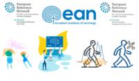 "ERN-RND webinar on ""MRI pattern recognition in leukodystrophies"" – MRI upload by participants"